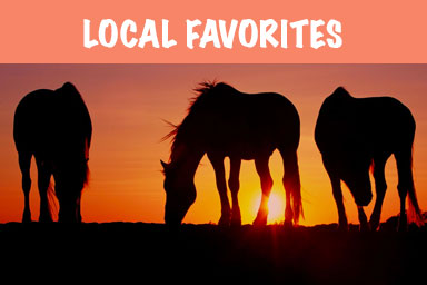 OBX Local Favorties
