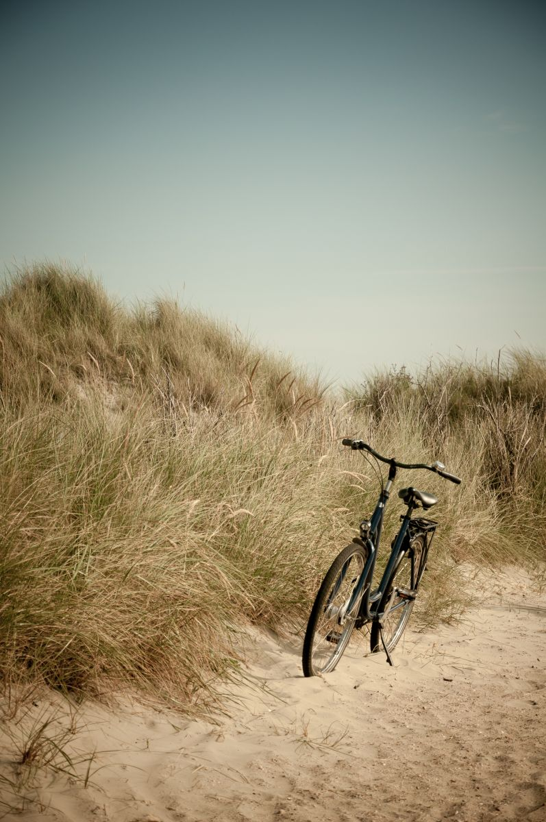 bike resting on the dunes